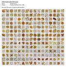 Pollen grains under microscope - Gold 25