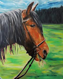 Le cheval brun. huile sur toile 92 x 73 cm 2021