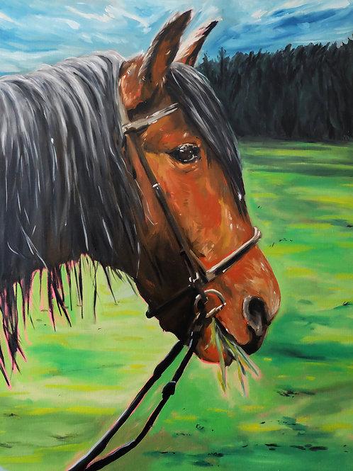Le cheval brun huile sur toile 92 x 73 cm 2021