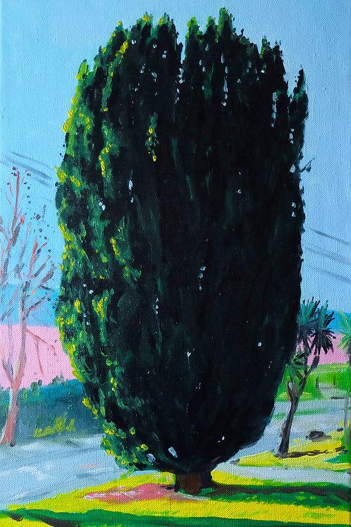 Le cyprès huile sur toile 27 x 41 cm 2020