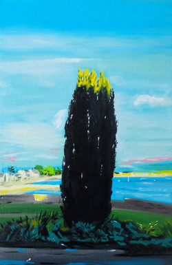 le cyprès au bord de mer. huile sur toile 41 x 27 cm 2021