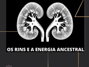OS RINS E A ENERGIA ANCESTRAL