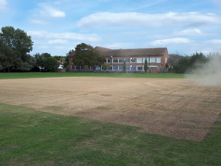 A new pitch for the 2021 season!