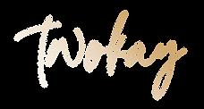 Логотип-ПНГ---Градиент.png