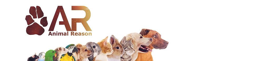 Animal Reason.jpg