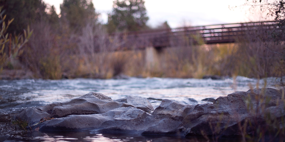 Tashlich Walk to the Mystic River