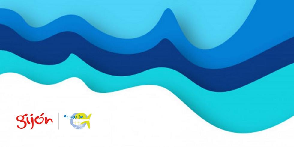 """Taller """"Surfeando las corrientes"""""""