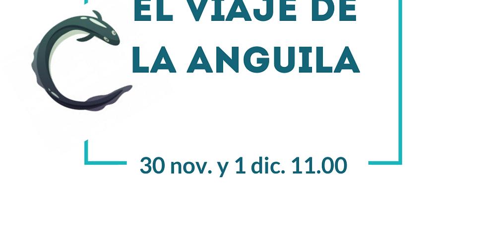 """Taller """"El viaje de la Anguila"""""""