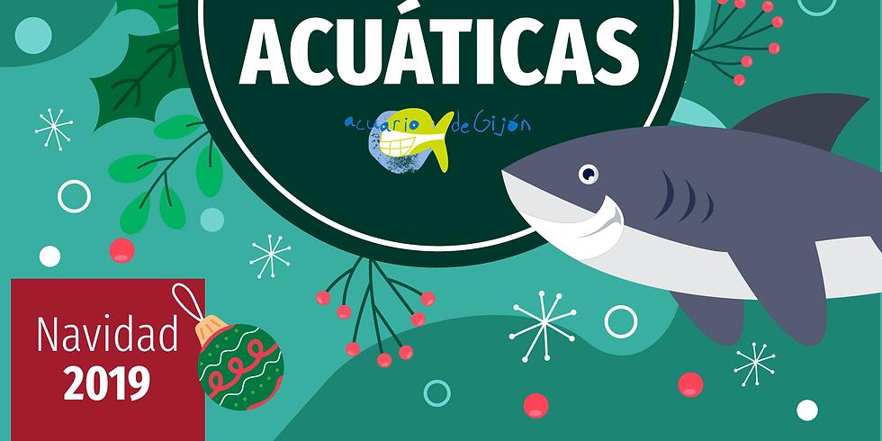 Vacaciones Acuáticas 30 y/o 31 de diciembre