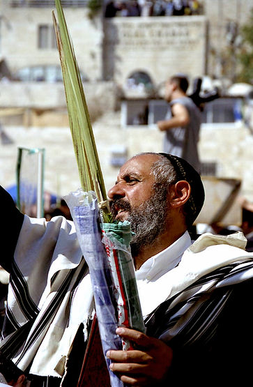 man and lulav at BC 902.jpg