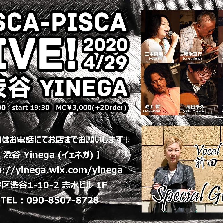 【延期】2020.4/29(水•祝) Pisca-Pisca with 前田 優子@渋谷 Yinega (イェネガ)