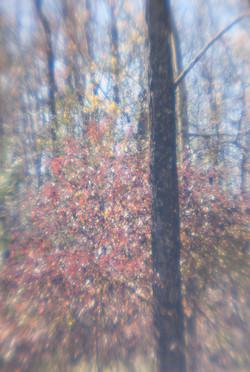 October Vision