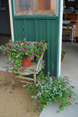 flowerbuds+hanging+baskets+with+chair.jp