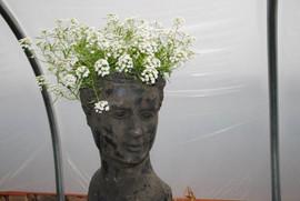 flowerbuds+head+planter.jpg