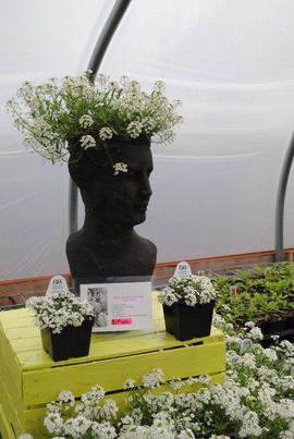 flowerbuds+head+planter+3.jpg