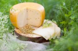 Ievas siers ritulī ar amoliņa sēklām (6 €)