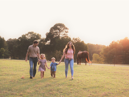 Farm session with the Wrights