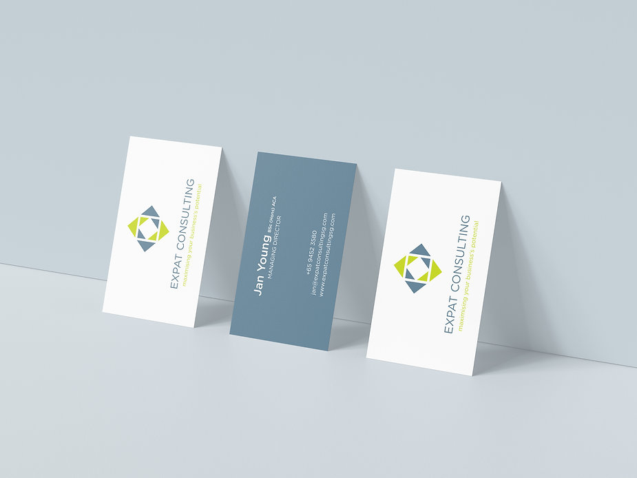 Expat Consulting Mockup