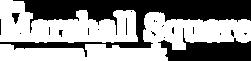 MSRN Logo.png