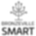 bronzeville-smart-team.png