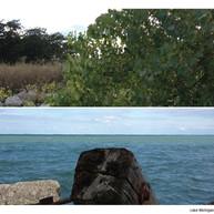 20130921_FTS_postcards5.jpg