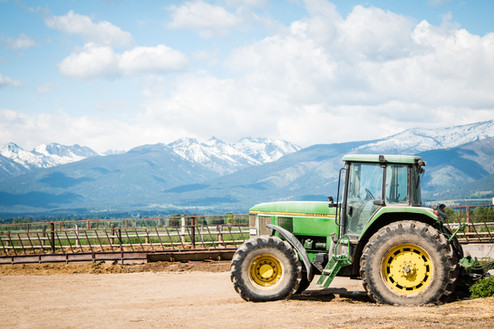 McPherson Farms | Stevensville, MT