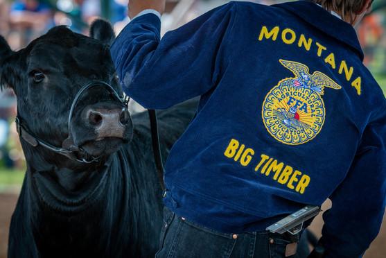 Show time | Big Timber, MT
