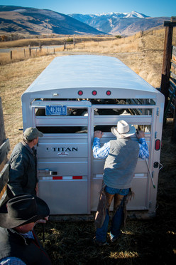 Stenberg Ranch | McLeod, MT