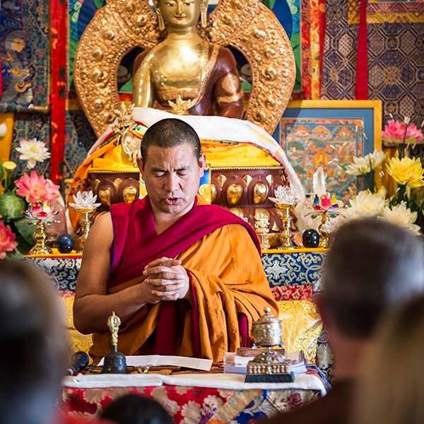 Weekly Friday Night Meditation - Medicine Buddha
