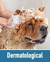 Dermatological