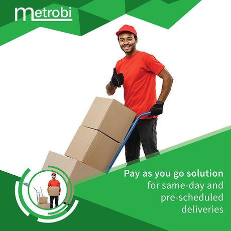 metrobi--notstarve_edited.jpg