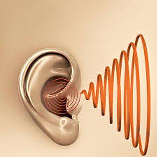 poblex kulak sağlığı vetıkaçları iletişim