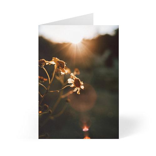 Greeting Cards (8 pcs): Murrieta, California