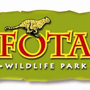 Minis Trip Easter 2019 - Fota and Airtastic