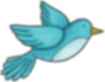 khadfield_SpringitySpring_bird.png