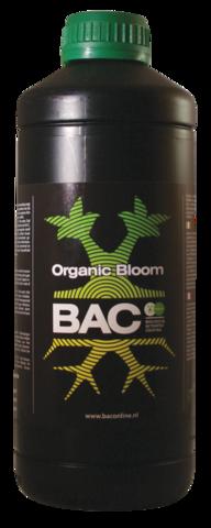 BAC - Bloom