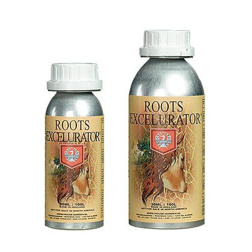House & Garden - Silver Roots Excelurator