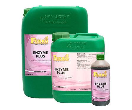 Ferro - Enzyme Plus