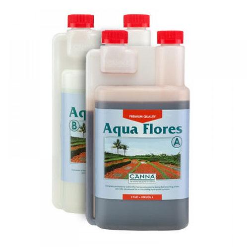 Canna - Aqua Flores AB