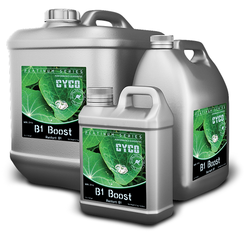 Cyco - B1 Boost