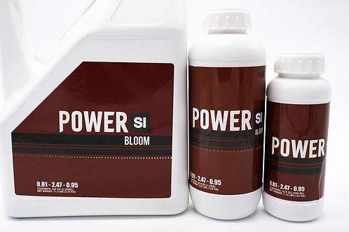 Power Si - Bloom