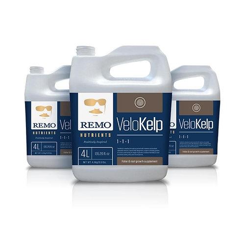 Remo - VeloKelp