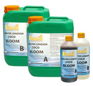 Ferro - COCO Bloom A/B Greater London