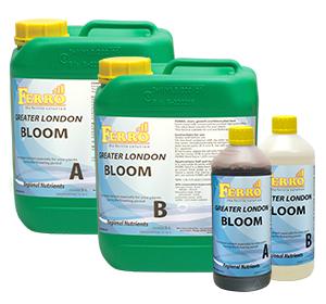Ferro - Bloom A/B Greater London