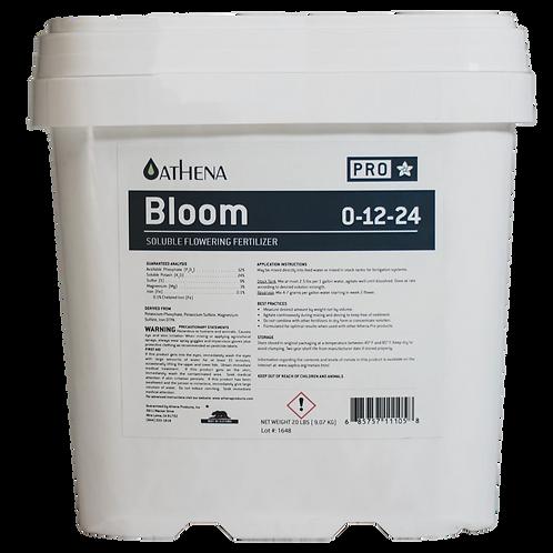Athena Pro Bloom