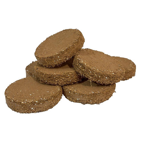 ROOT!T Potting Biscuit - Pack of 20