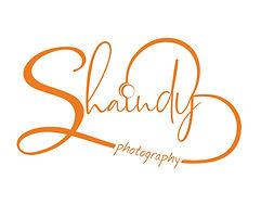 לוגו שינדי.jpg