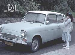 שושי מצלמת מכונית צבע רקע יער + לוגו  (Large)