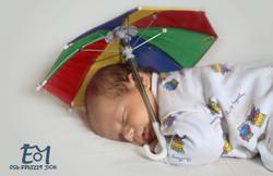 לביא מתחת למטריה + לוגו (Large)