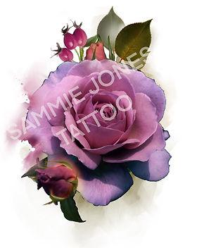 image_6483441-12.JPG